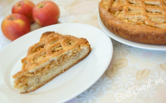 Пирог с тертыми яблоками